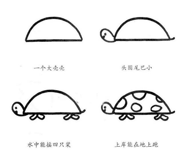 乌龟简笔画的画法步骤图解教程_乌龟如何画