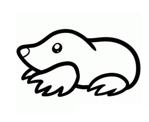 鼹鼠简笔画图片大全_小动物鼹鼠如何画?