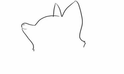 狐狸简笔画步骤图片 - 可爱的小狐狸简笔画教程