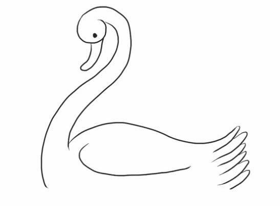 水中的白天鹅简笔画步骤图解教程 - 如何画白天鹅简笔画