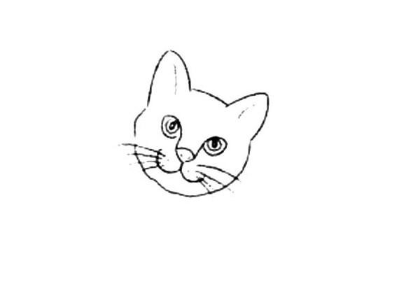 【小猫的简笔画画法步骤】宠物家养短毛猫简笔画步骤图解教程