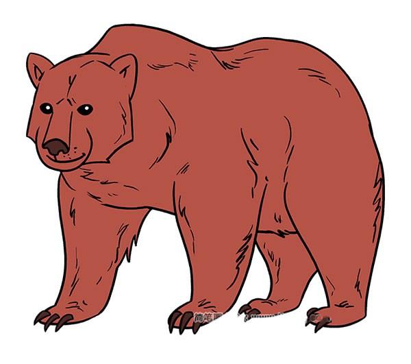 【狗熊简笔画】带颜色和不带颜色的大狗熊简笔画图片大全
