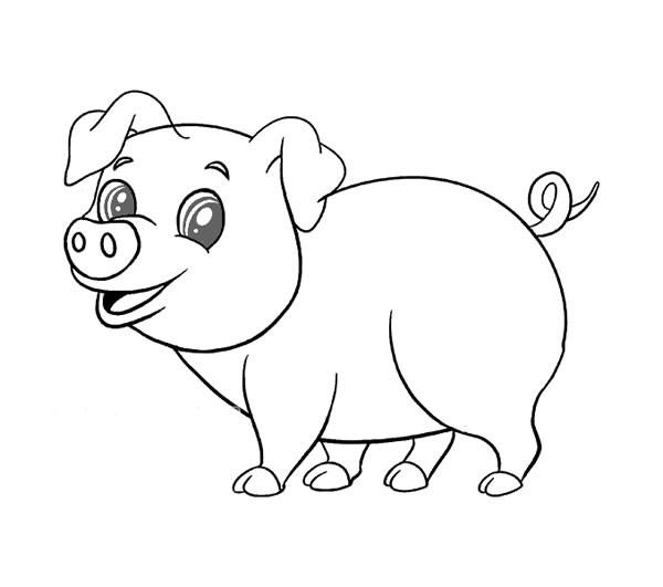【猪的简笔画】可爱的小猪简笔画图片大全