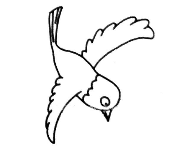 【喜鹊简笔画】6款简单的喜鹊简笔画图片大全