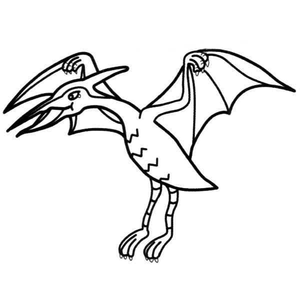 【恐龙简笔画】简单的翼龙简笔画图片