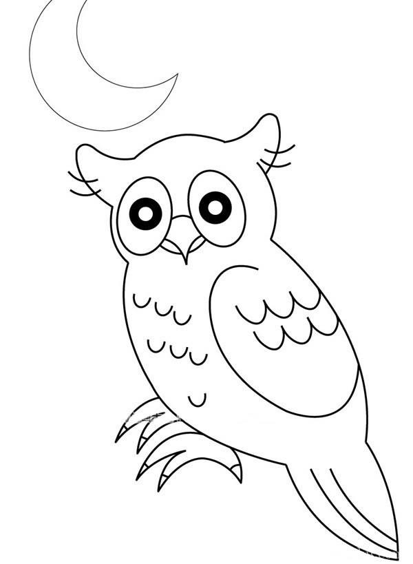 月光下的猫头鹰简笔画图片