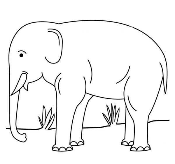 草地上的大象简笔画_大象简笔画