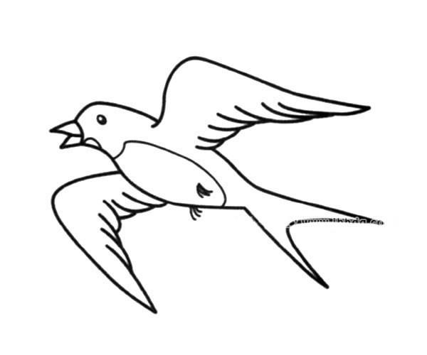 飞翔的燕子简笔画图片_燕子的简单画法
