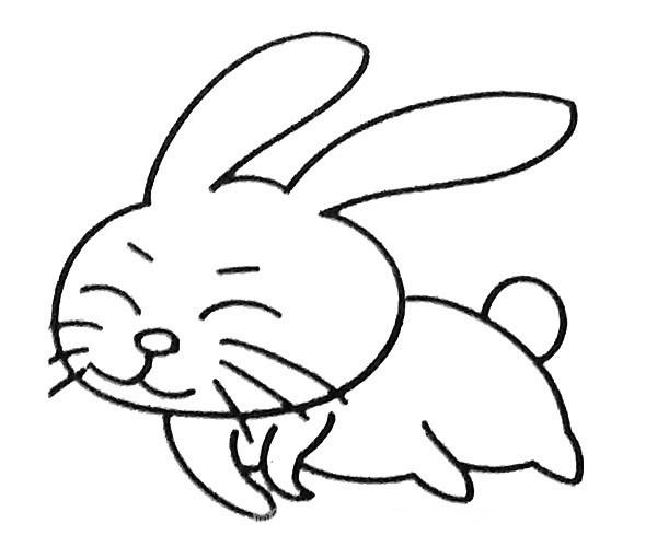 可爱的小兔子简笔画图片大全_6张小兔子的简单画法