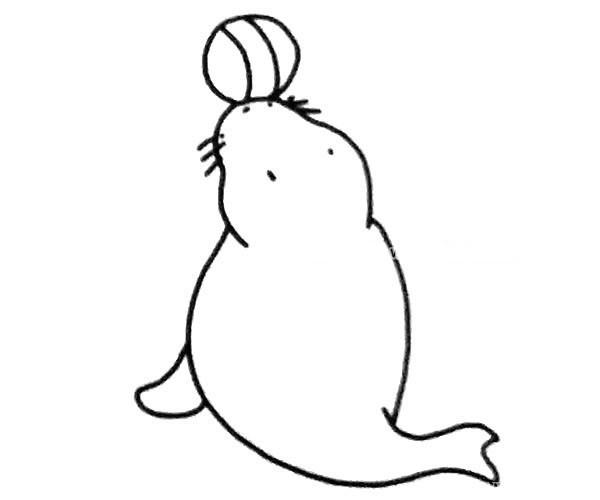 6款可爱的海狮简笔画图片 海狮的简单画法大全