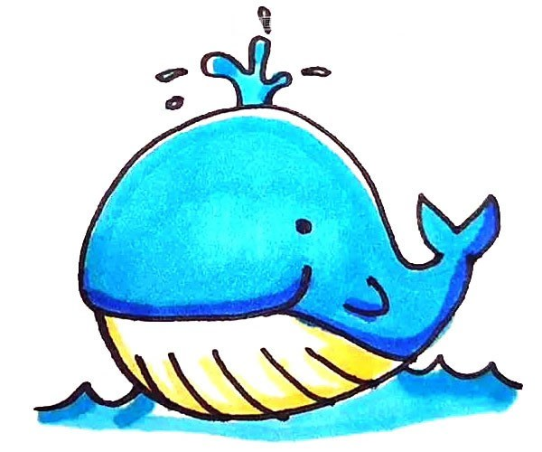 儿童学画可爱的鲸鱼简笔画步骤图解教程