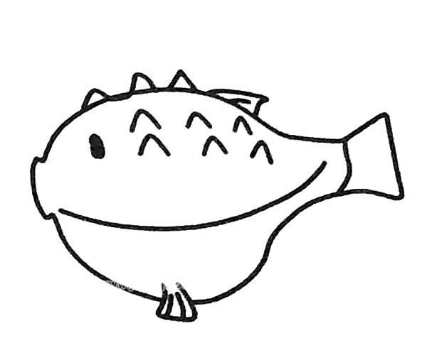 6款可爱的河豚简笔画图片 河豚的简单画法大全