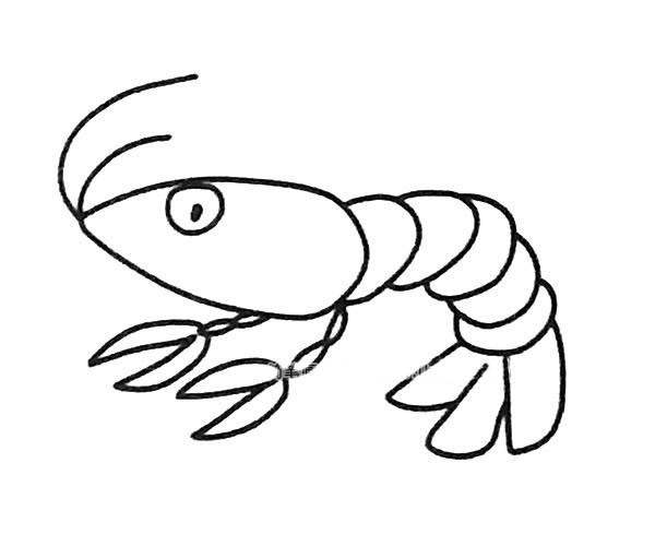6款卡通虾的简笔画图片 卡通虾的简单画法大全