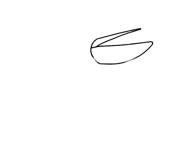儿童学画鹈鹕简笔画步骤图解 鹈鹕如何画