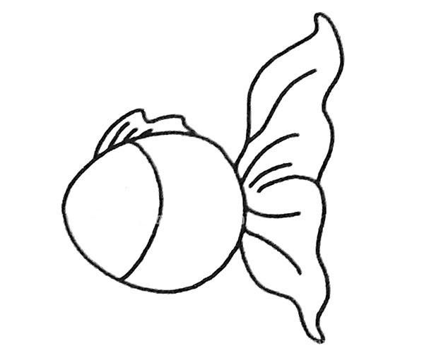 儿童学画孔雀鱼简笔画步骤教程 孔雀鱼如何画