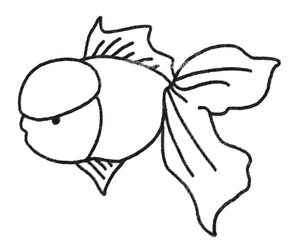 6款漂亮的孔雀鱼简笔画图片 孔雀鱼的简单画法大全