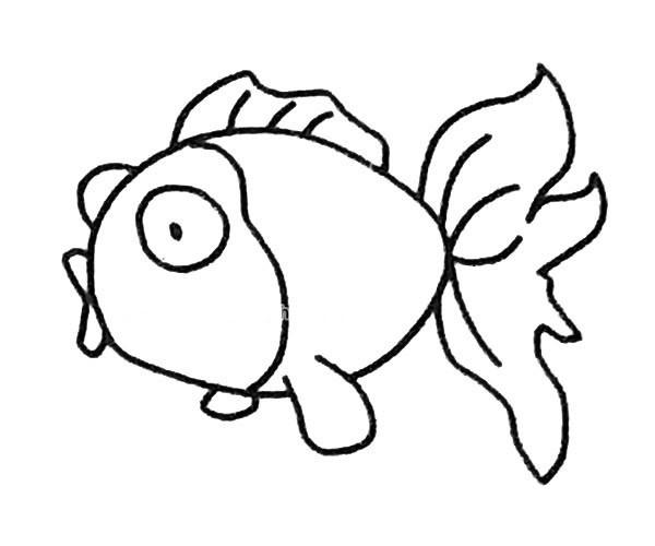 儿童学画金鱼简笔画步骤教程 简单的金鱼如何画