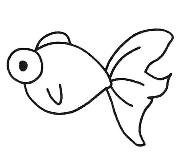 6款卡通金鱼简笔画图片 金鱼的简单画法大全