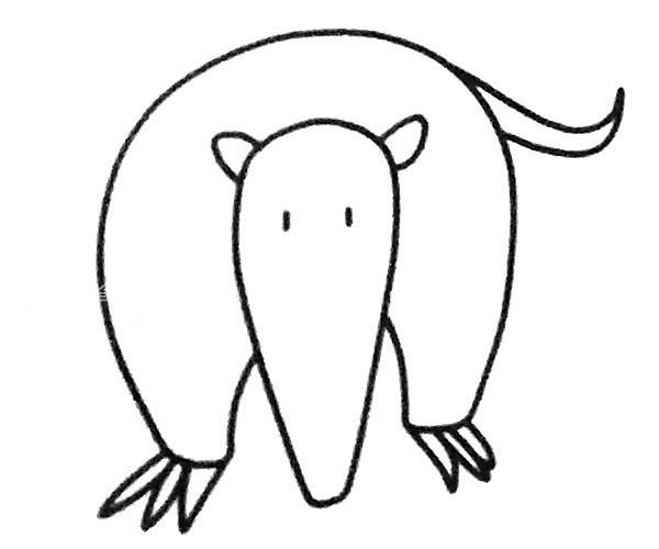 儿童学画食蚁兽简笔画步骤教程 食蚁兽的简单画法