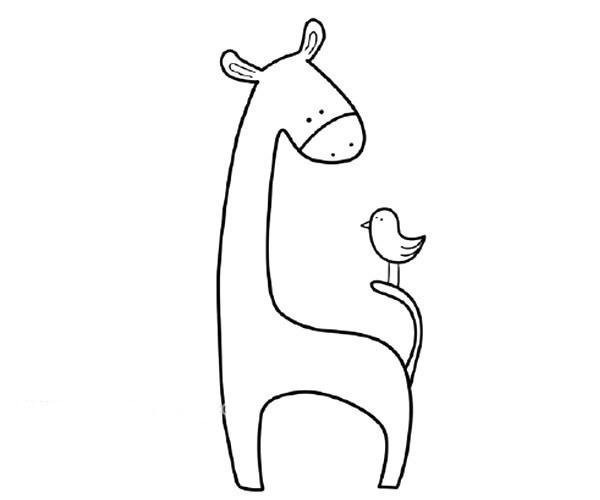 儿童学画长颈鹿和小鸟简笔画步骤教程 长颈鹿的简单画法