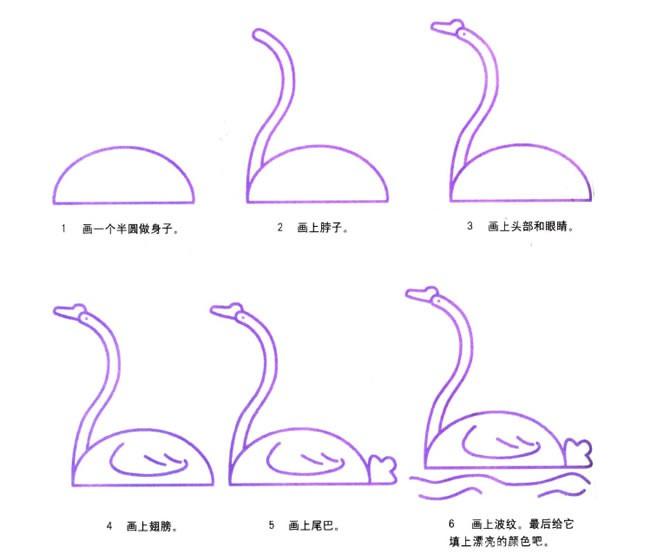 儿童六步画出天鹅简笔画步骤图解 天鹅的简单画法