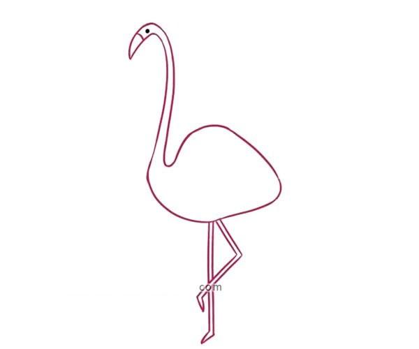 儿童学画漂亮的火烈鸟简笔画步骤教程 火烈鸟的简单画法