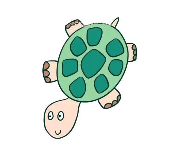 卡通小乌龟简笔画彩色画法