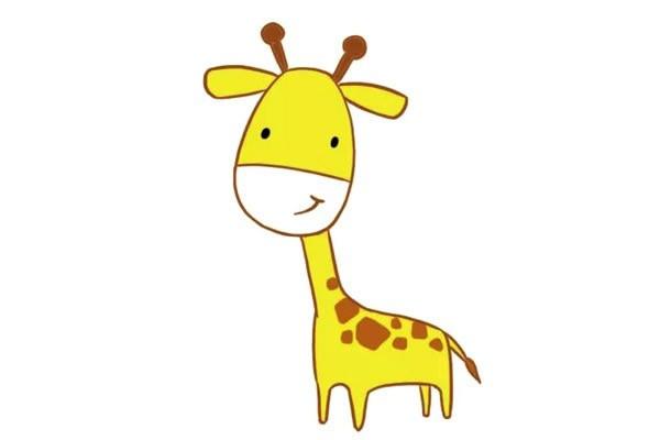 长颈鹿简笔画 简单五步画出可爱的长颈鹿步骤教程