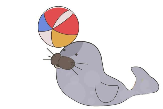 【小海豹简笔画】小海豹顶皮球简笔画步骤图教程
