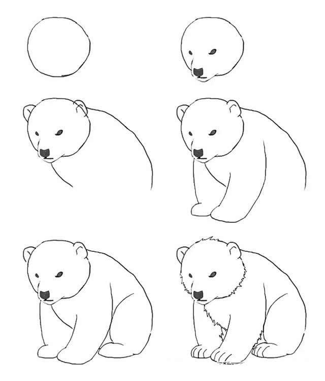呆呆的可爱小狗熊简笔画步骤图解