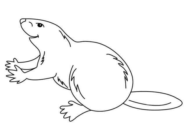 一组(恐龙,土拨鼠,小鹿,犀牛等)动物简笔画素材,喜欢就收藏起来
