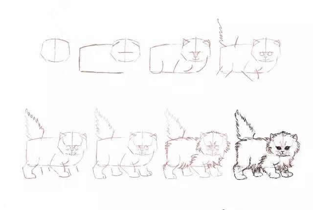 10种不同的小猫咪画法大全
