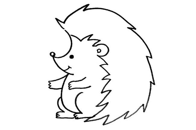 小刺猬简笔画步骤图片 超简单的画法教程