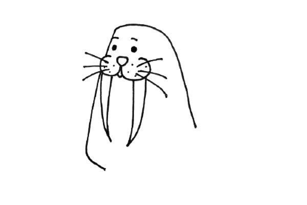 戴帽子的海象简笔画步骤图片 超简单的画法教程