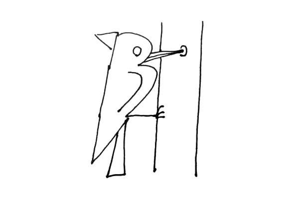 简单七步画出:啄木鸟简笔画步骤图片教程