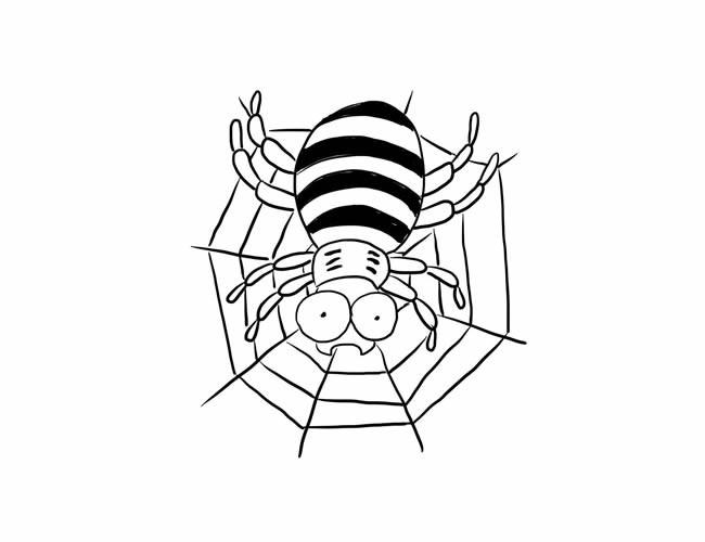 蜘蛛网上的蜘蛛简笔画图片素材